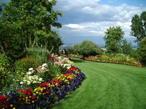 Lawn care services and your home garden