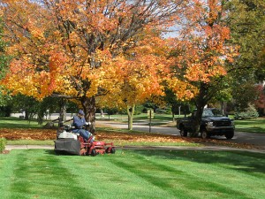 Fall grass care: Take advantage of lawn care this season